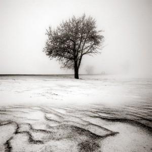 cccxxi____desolate_winter_by_behherit-d39fqrf
